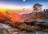 Stimmungsvolle Landschaften in Sachsen 2019 (Wandkalender 2019 DIN A3 quer): Wunderschöne Landschaften und Stimmungen in Sachsen (Monatskalender, 14 Seiten ) (CALVENDO Natur)